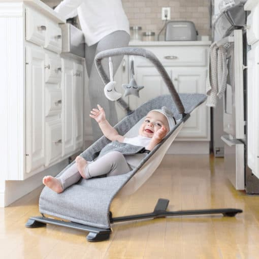 Go With Me Alpine Deluxe Portable Bouncer with Baby