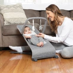 Go With Me Alpine Deluxe Portable Bouncer