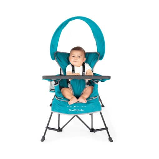 Baby Delight Jubilee Portable Chair